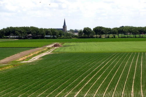 Foto platteland